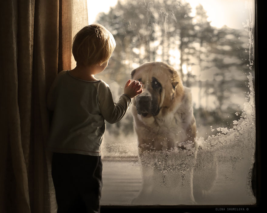 animal-children-photography-elena-shumilova-2-19