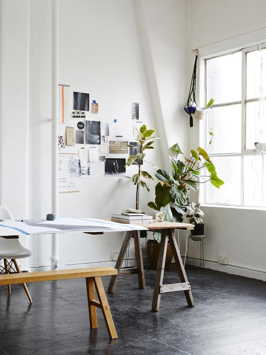Домашние растения в дизайне интерьера