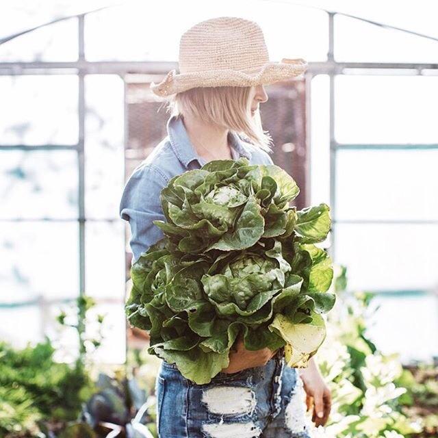 Красота и хорошее самочувствие: 5 продуктов, которые должны быть основой вашего меню