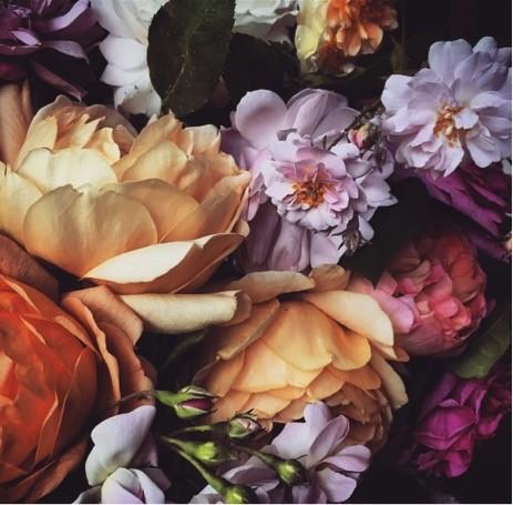 Порция красоты с доставкой на телефон: лучшие флористы инстаграма