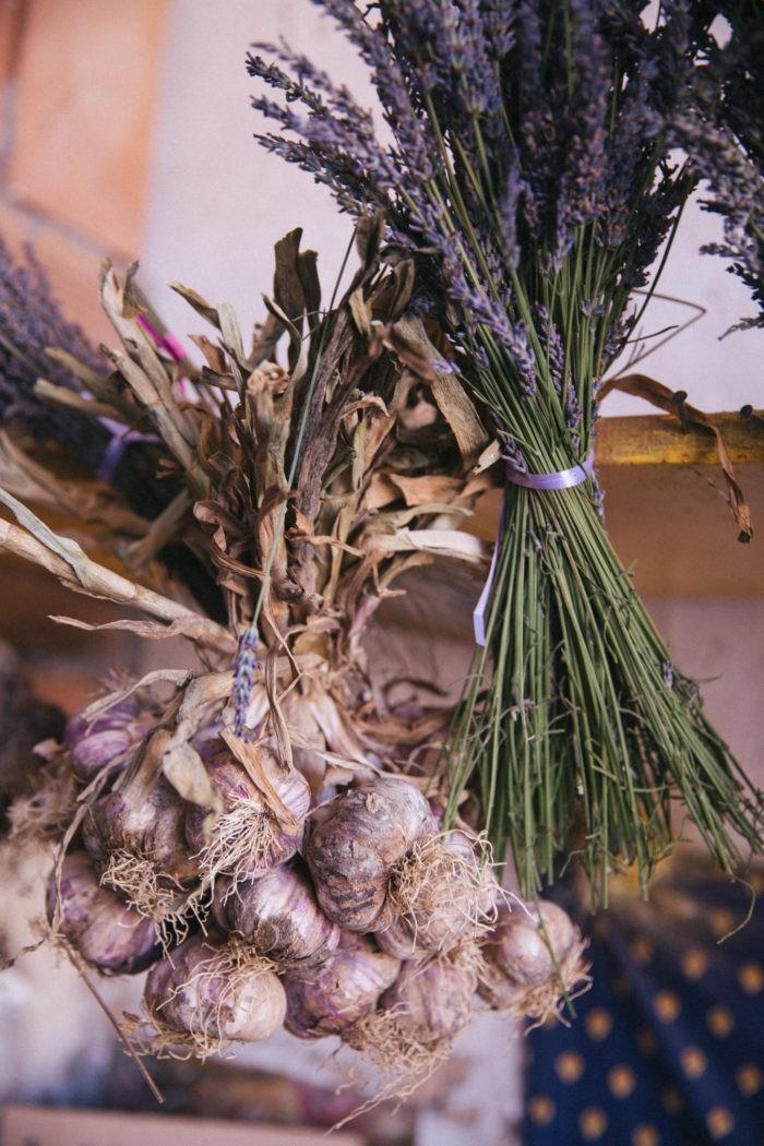 Lavender-in-Provence-15